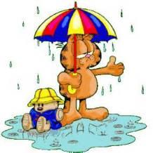 rainpic1